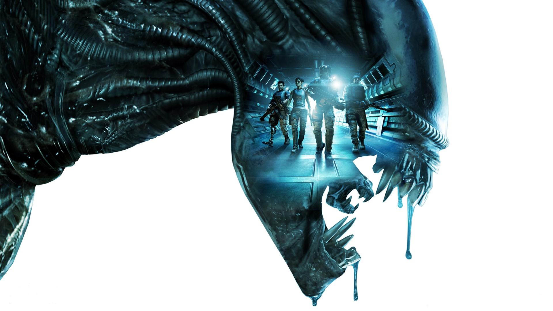Aliens Colonial Marines Banner Early Pre Ordering: An Exercise in Futility