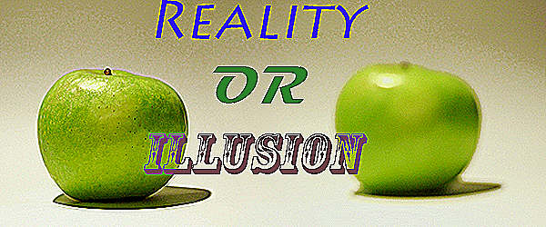 reality vs illusion Reality or Illusion: Violence in Video Games